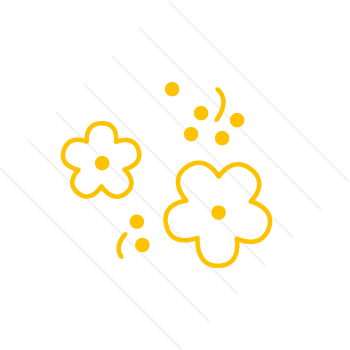 pollenustaub.png